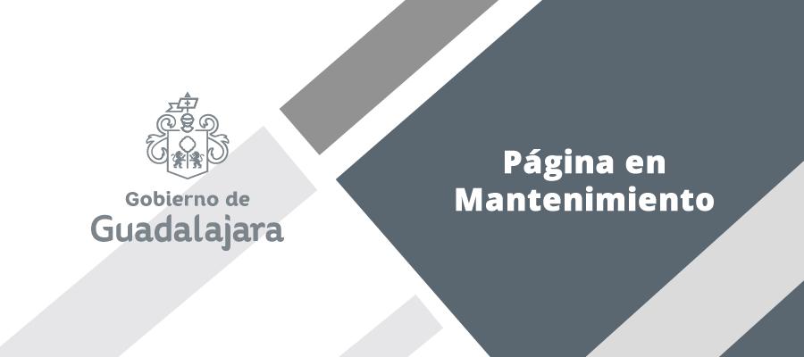 Refrendo De Licencias Ayuntamiento De Guadalajara